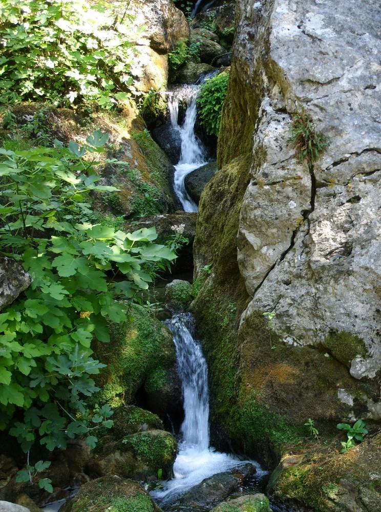 Picoole cascate nel bosco