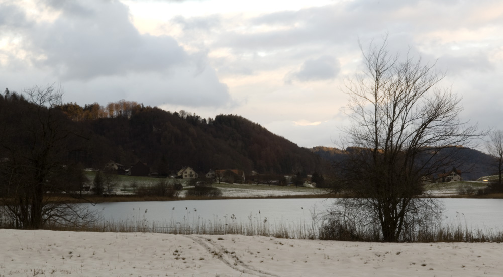Picture Postcards From TG (Nicht LA)
