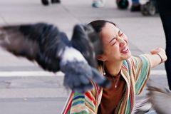 Pigeons! Oh, pigeons!!