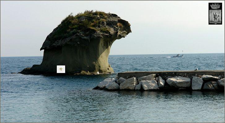 """""""Pilz"""" in Lacco Ameno / Ischia"""