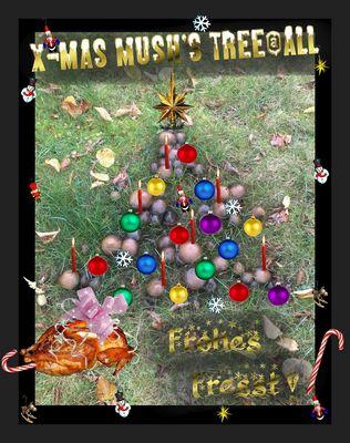 Pilze zu Weihnachten...