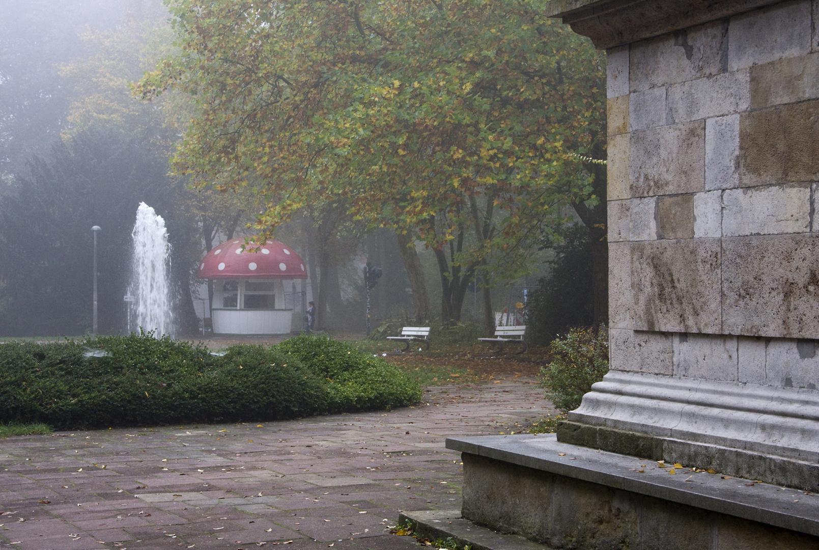 Pilzsaison in Regensburg