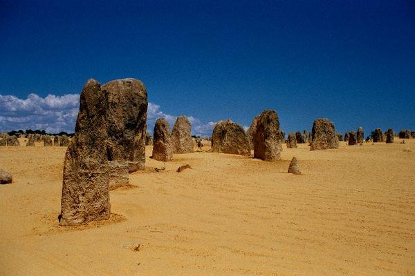 Pinacle Desert