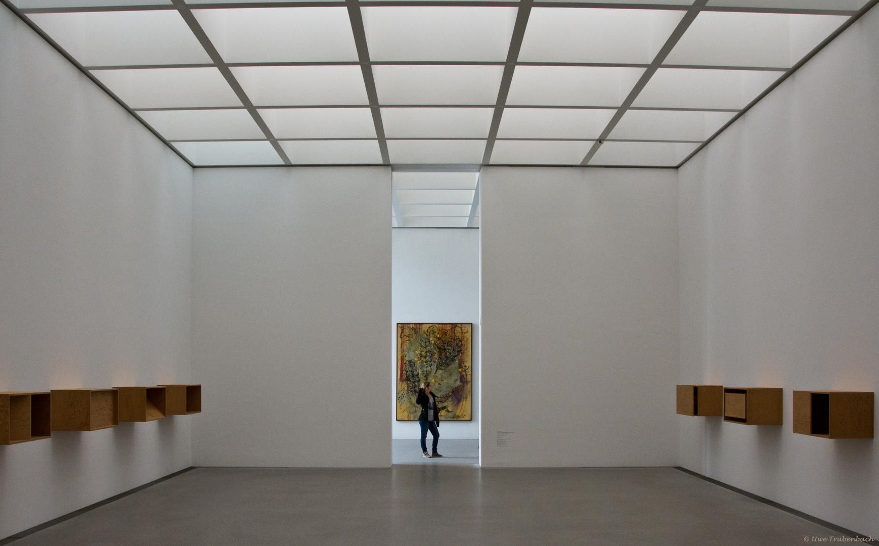Pinakothek der Moderne (9)