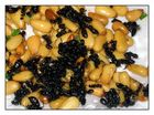 Pine nuts and ants - delicious!