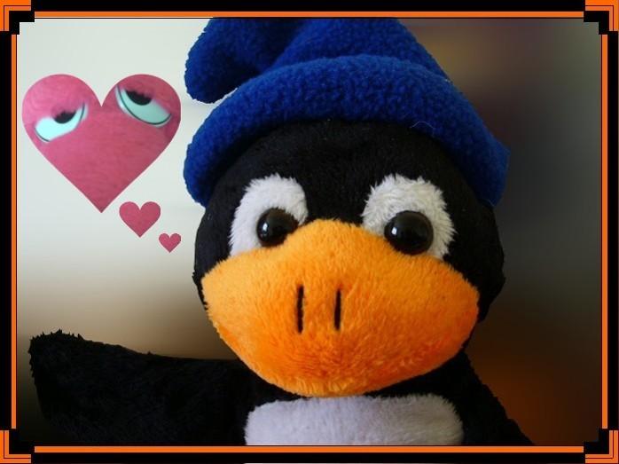 Pingu in Love