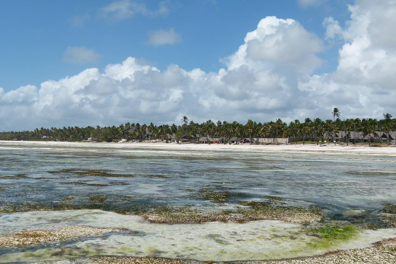 ...Pingwe Strand Zanzibar...