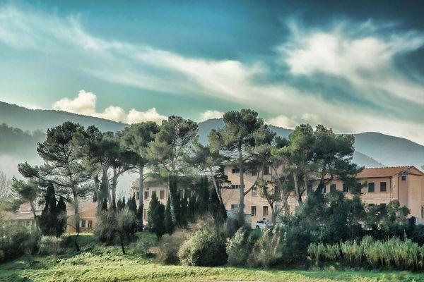 'Pinien-Garten'