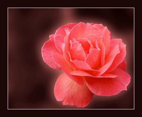 ...pink