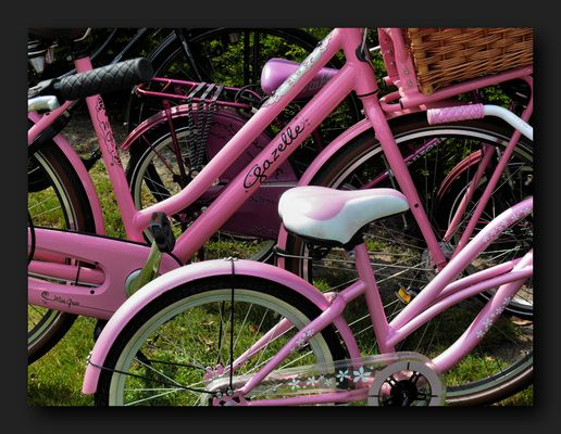 """Pink """"Gazelle"""" and two little"""