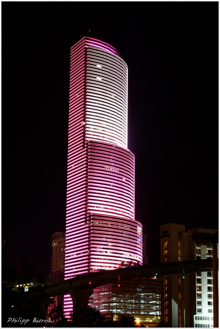 """Pink Miami"""