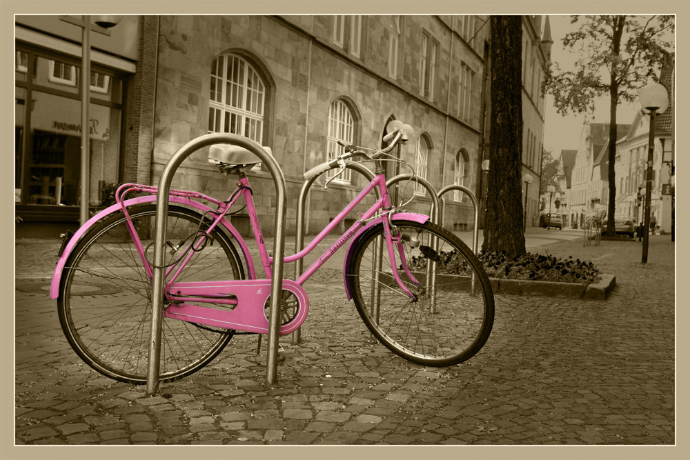 Pink Panther an der Leine