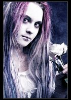 Pink Zombie's Rose
