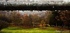 pioggia d'autunno