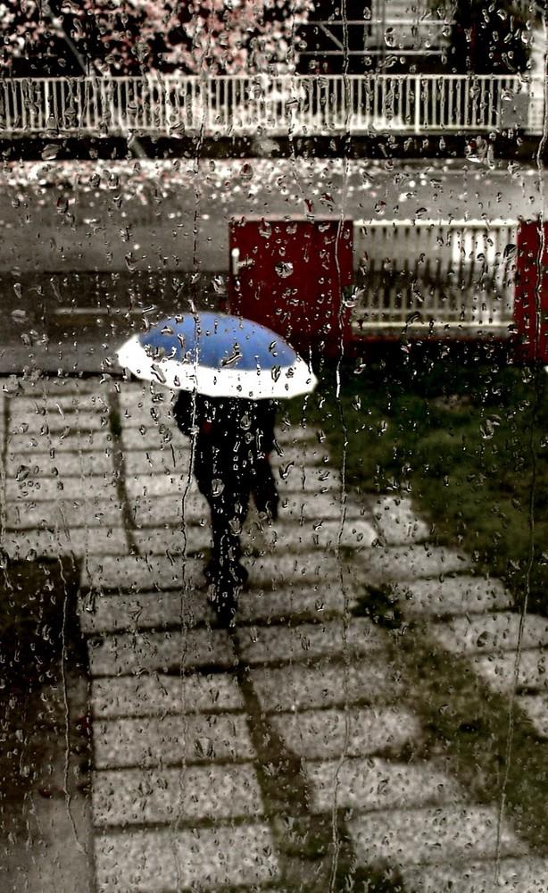 Pioggia di primavera