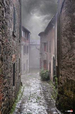 Pioggia e nebbia