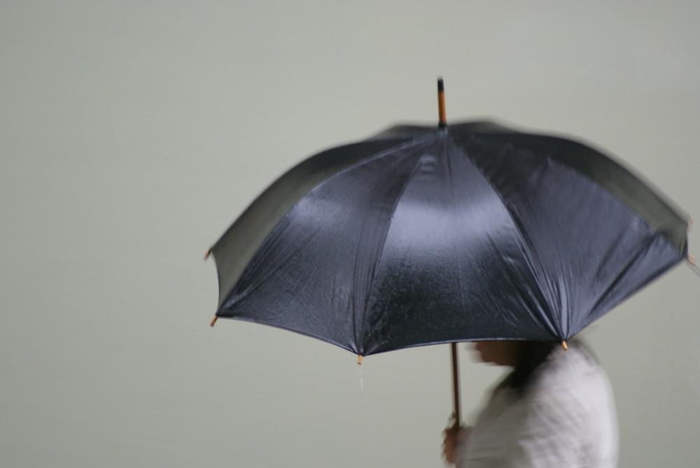 Pioggia Fastidiosa