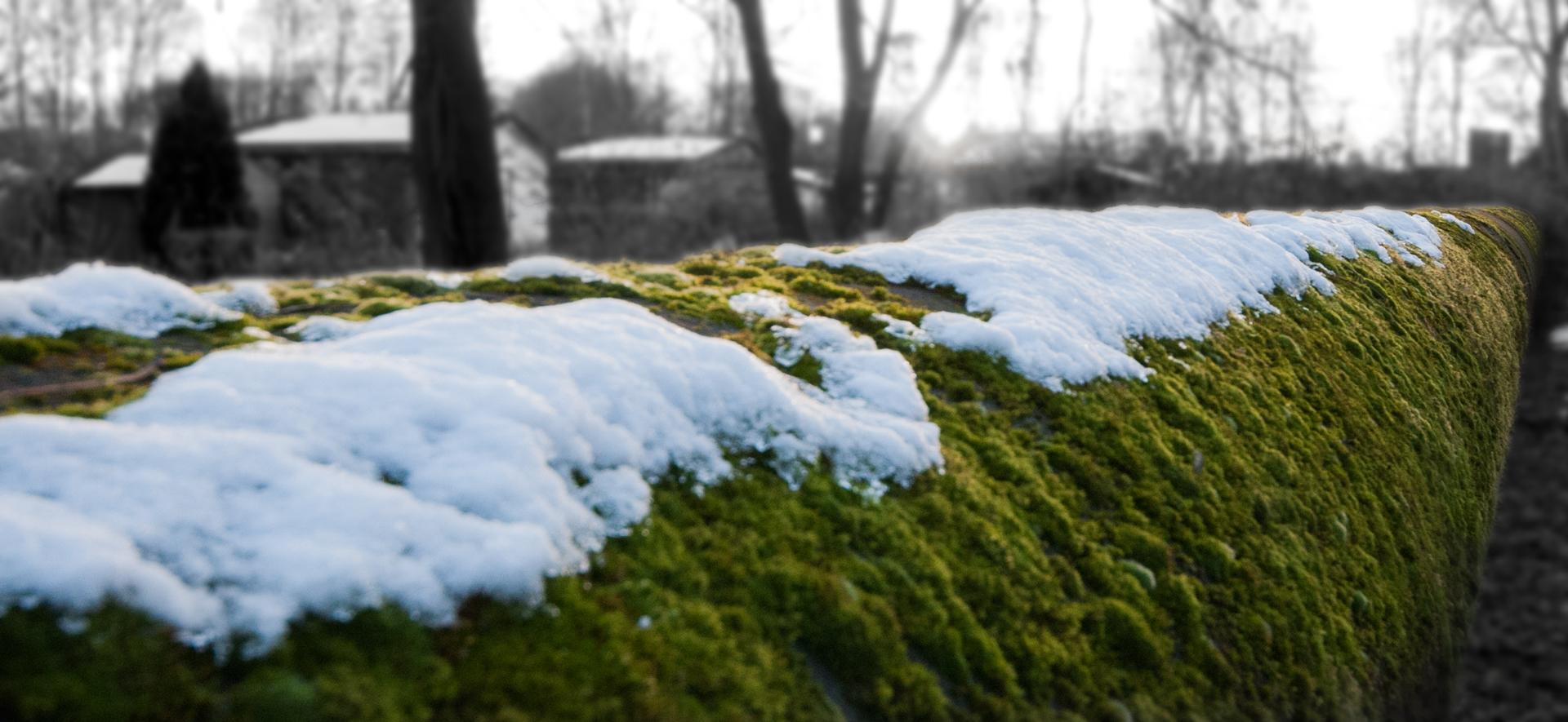 Pipeline 3 (Winter)