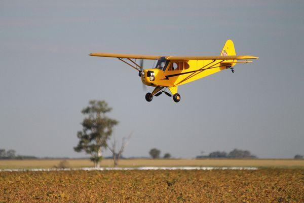 Piper J3 Cub R/C