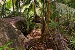 Pirateninsel Seychellen