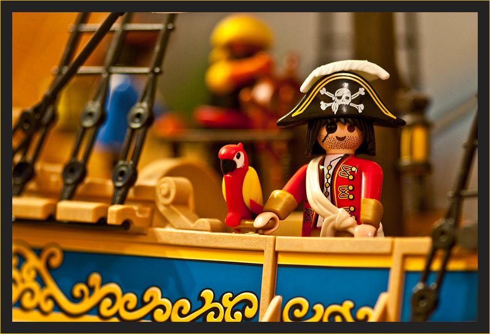 Piratenkapitän mit Papagei