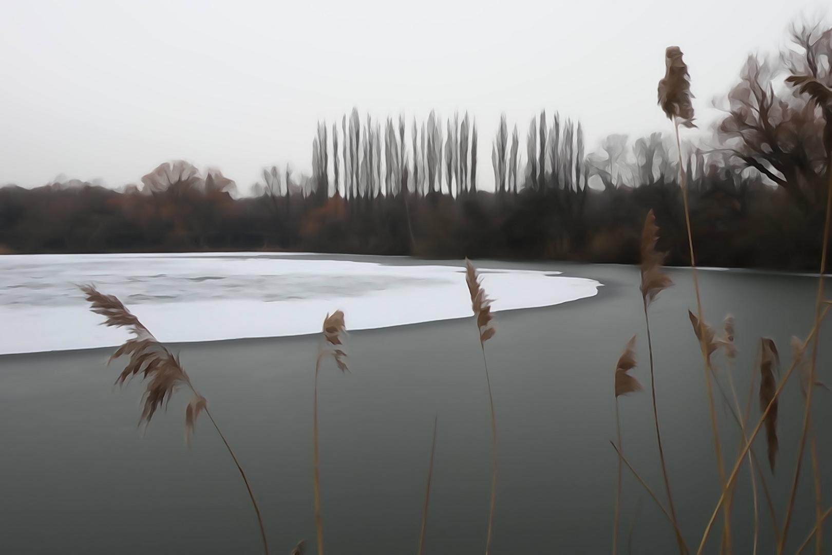 Piratensee im Winter