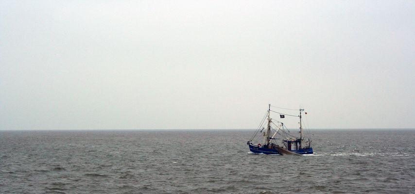 Pirates of the North Sea