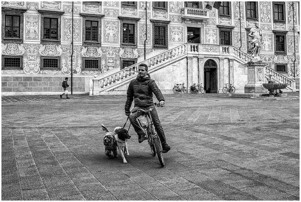 """PISA 11:32:51 - """"Arrivo in Piazza dei Cavalieri"""""""