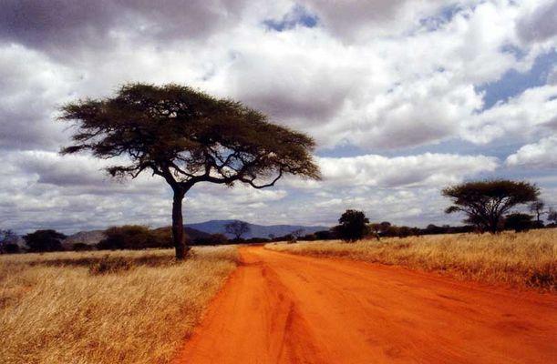 Piste in Kenia