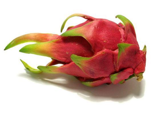 Pitahaya - Dragon fruits