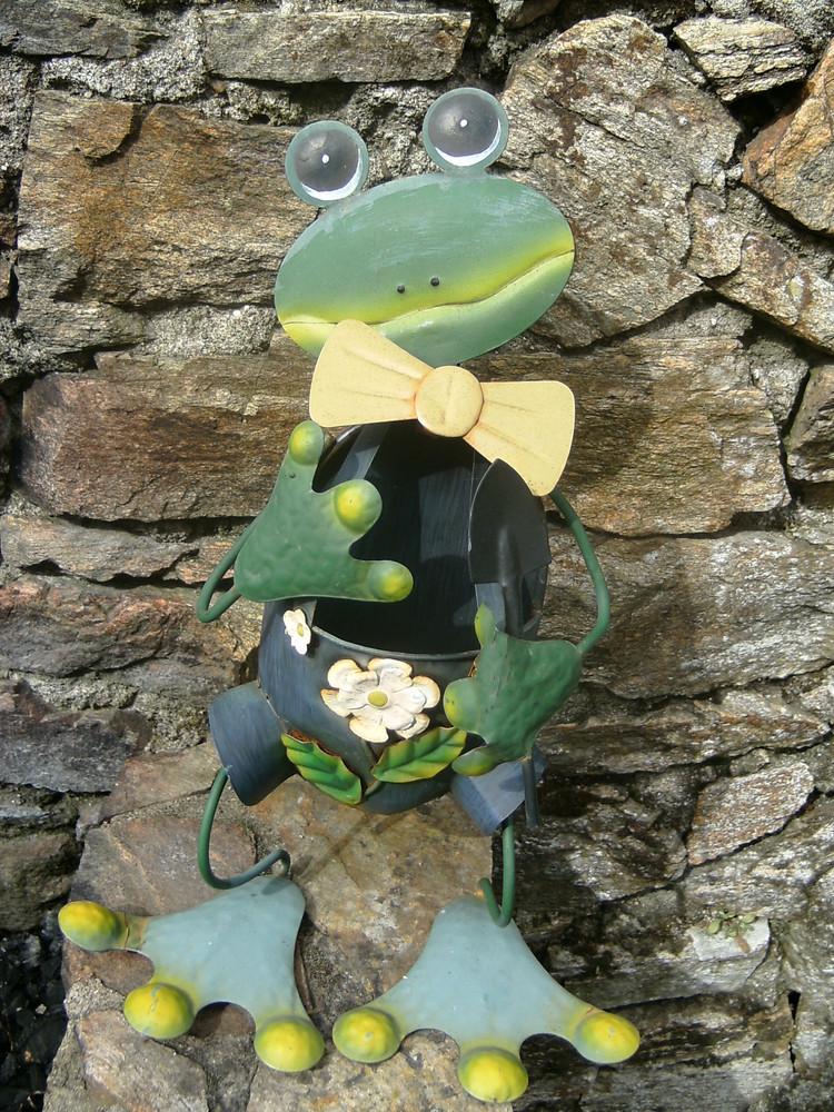 pitite grenouille de jardins