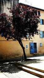 Place d' Astion