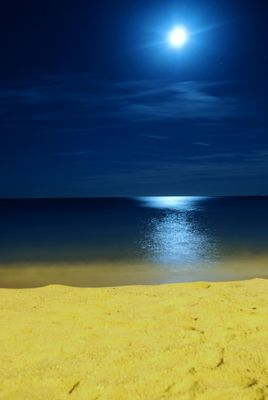 Plage au Clair de Lune