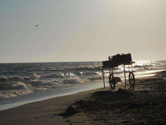 plage de Fiumicino