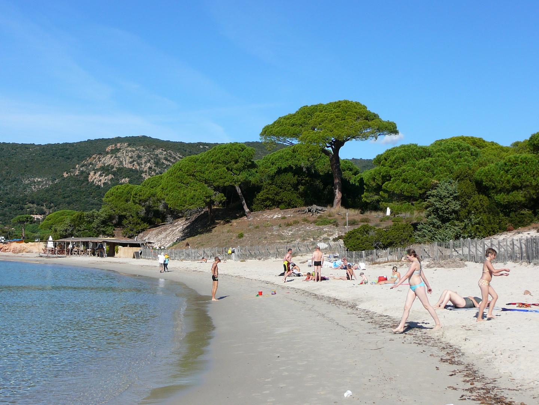 plage de Palumbaggia en Corse