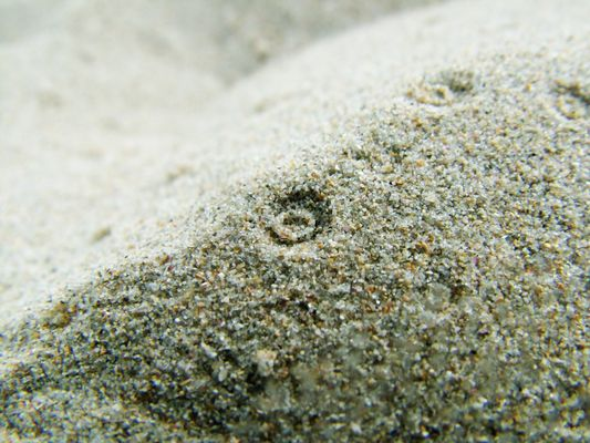 Plage, goutte, sable.