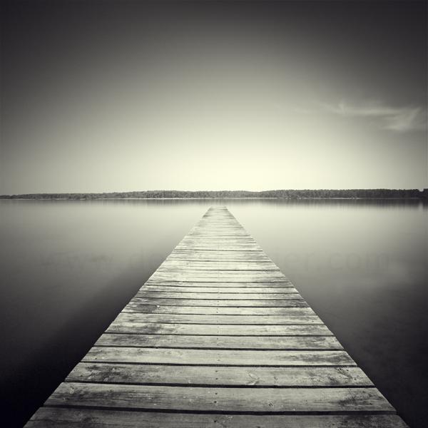 Plank Walk