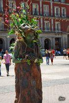 Planta humana en la Plaza Mayor