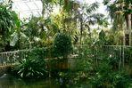 Plantasia - In den walisischen Tropen