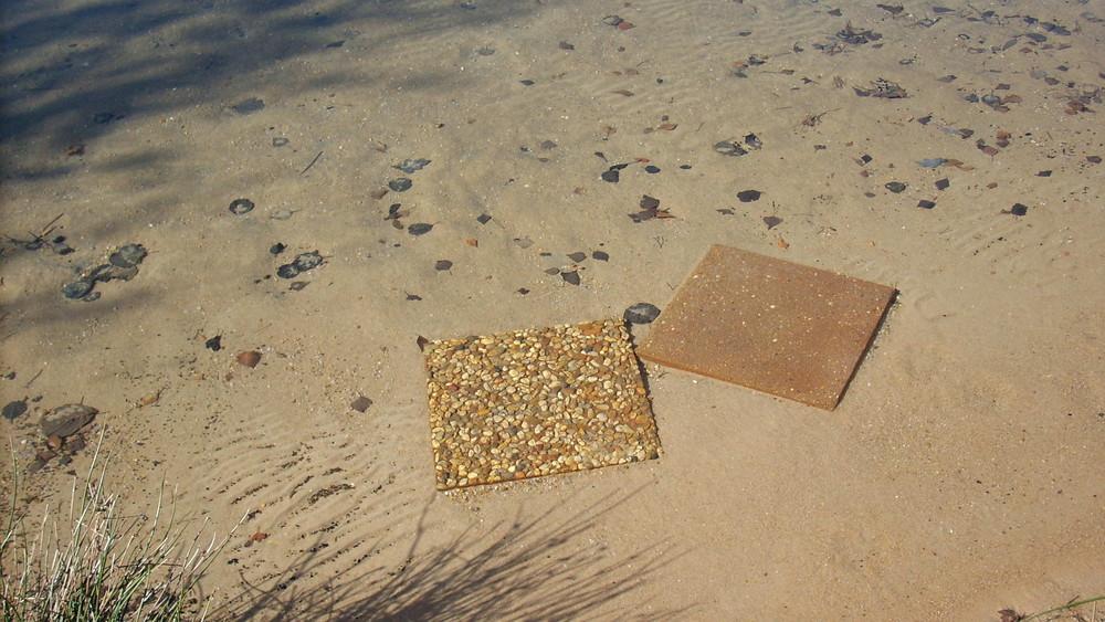Plattensee oder Platten im See