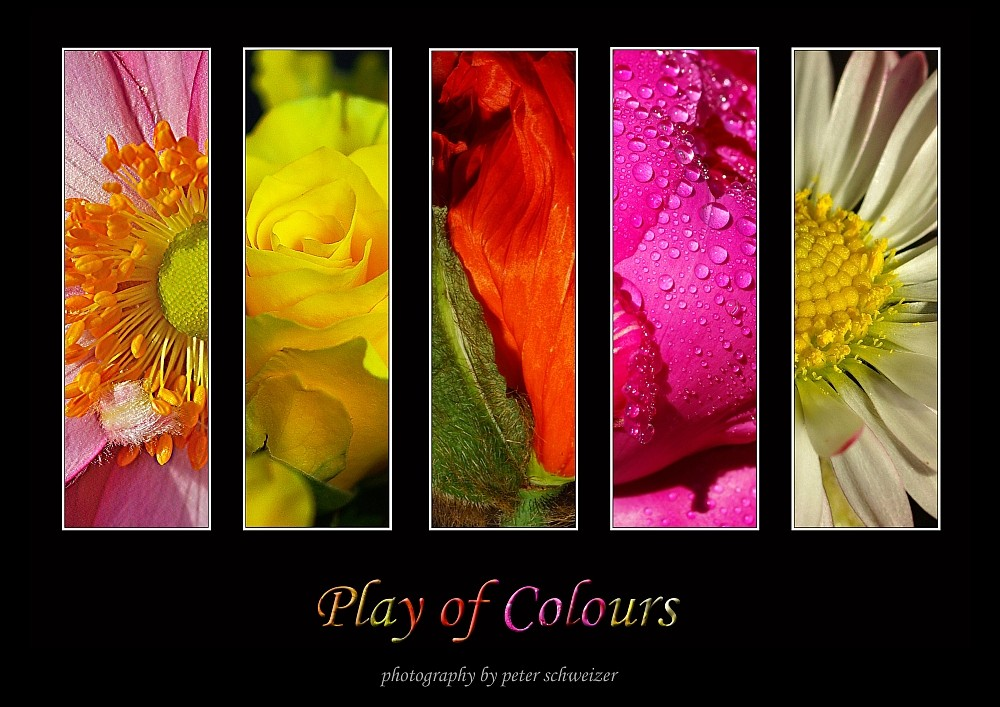 play of colours