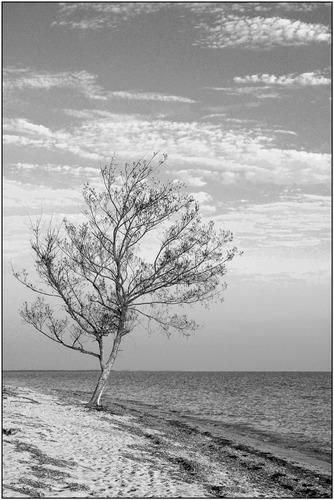 Playa Ancon II