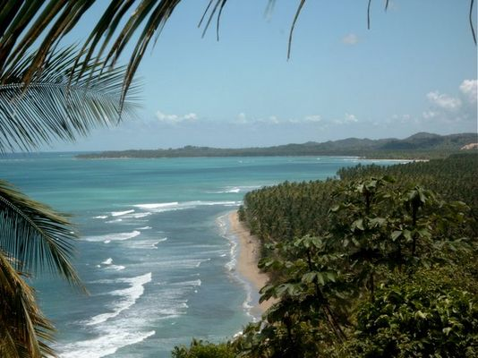 Playa Coson 7 km Meer; Strand; Palmen