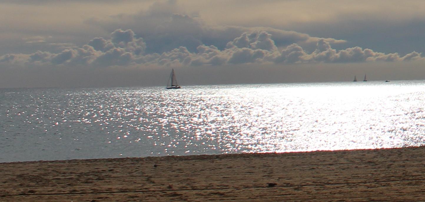 Playa de Barcelona hoy domingo