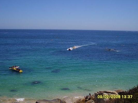 Playa El Canelo - V Región / Chile