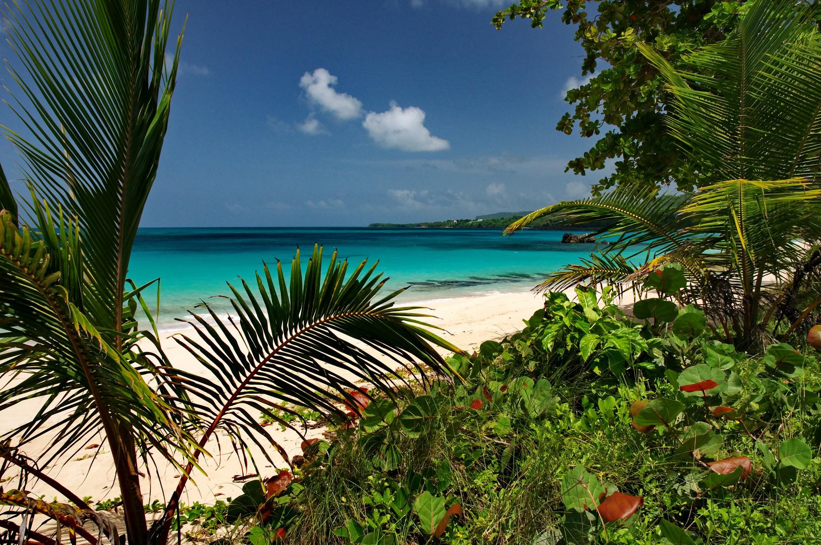 Playa Rincon Samana