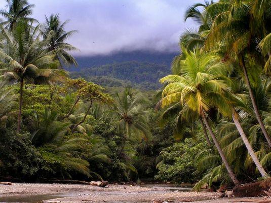 Playa Ventana - Palmcreek