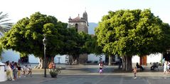 Plaza de España mit uralten Lorbeerbäumen