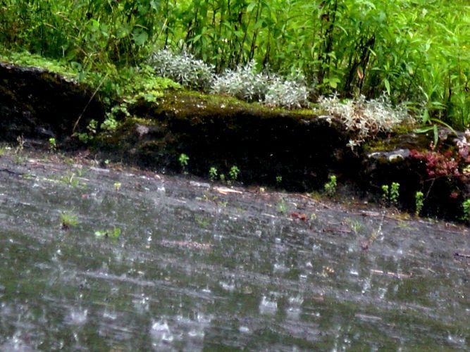 Plitsch Platsch. Alles nass
