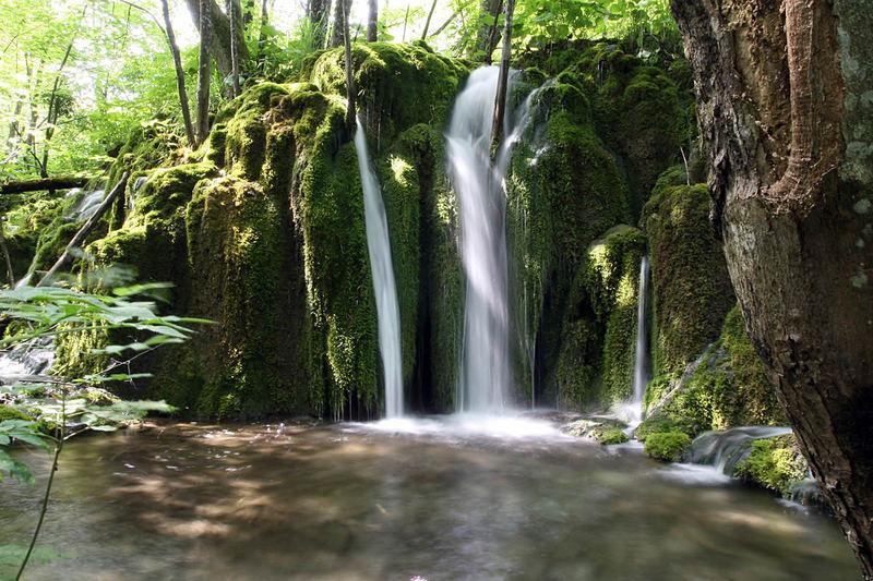 Plitvicer Seen - Nationalpark: # 3